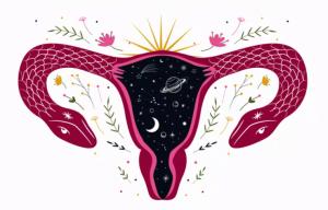 útero ginecologia